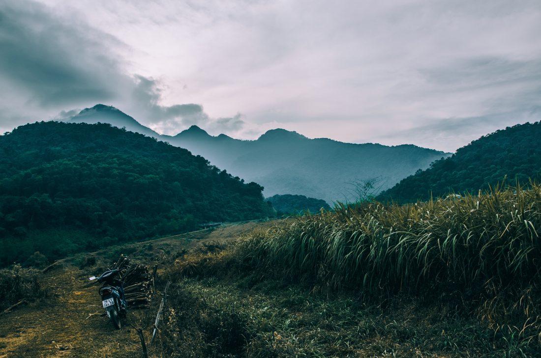 Vietnam Views